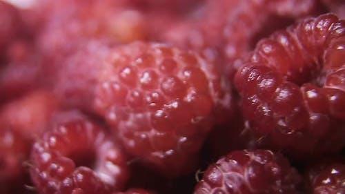 Raspberry fruit background. Close Up of raspberry