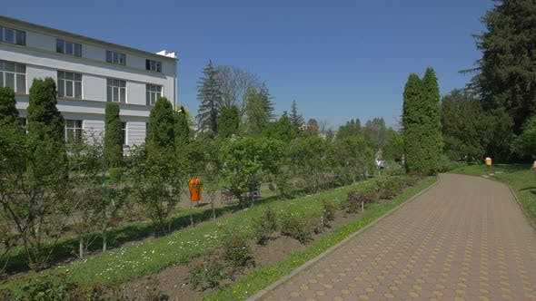 Courtyard of the Botanical Garden