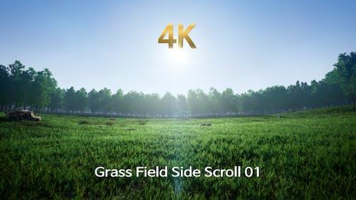 Grass Field Side Scroll 4K 01