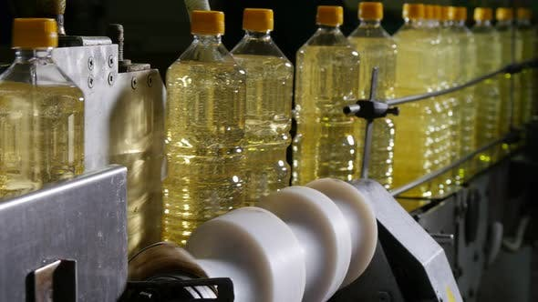 Cover Image for One Literplastic Bottles with Sunflower Oil Moving in Conveyor Stripes