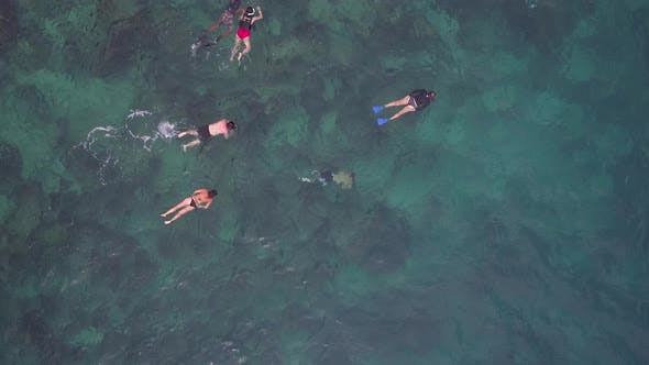 Thumbnail for Snorkeling View from Drone