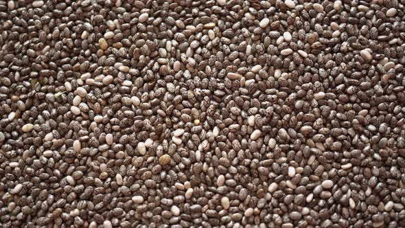 Cover Image for Rotation Macro Chia Seeds