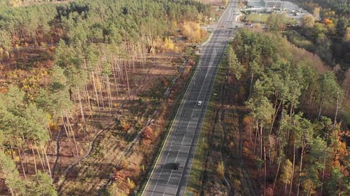 Speedy highway in forest