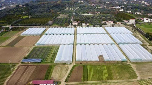 Agricultural greenhouse with renewable energy sources