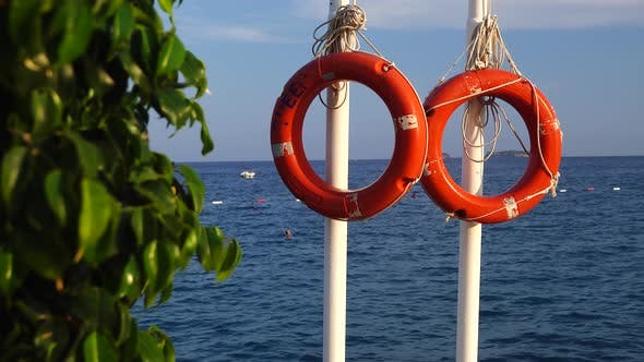 Thumbnail for Lifebuoy on a Pier in Sea