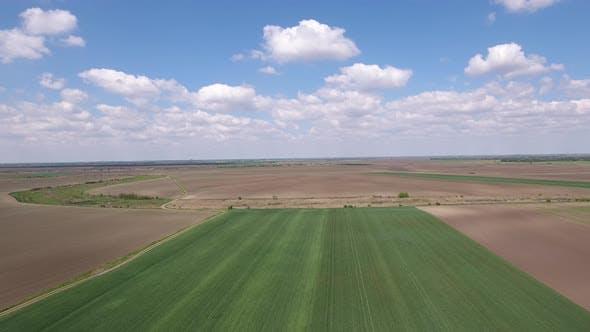 Thumbnail for Farmland Lanscape