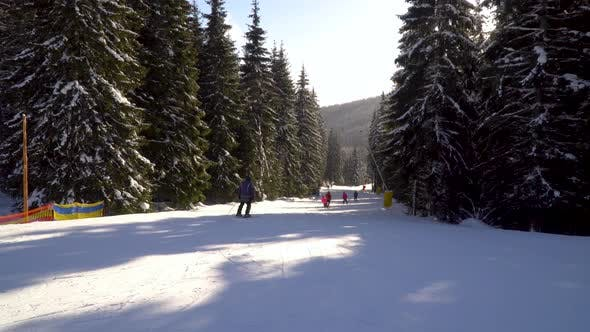 Thumbnail for Skiers Go Down the Slope in a Ski Resort