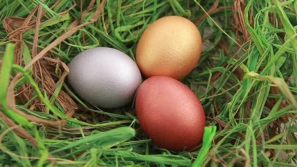 Thumbnail for Three Golden Easter Eggs on Grass
