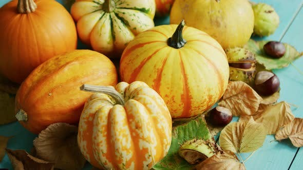 Thumbnail for Pumpkins Decorated with Chestnuts and Leaves