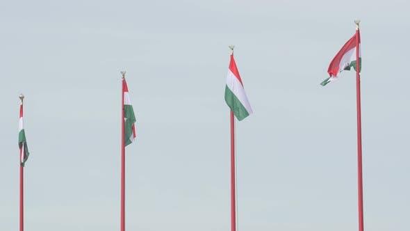 Thumbnail for Hungarian flags waving