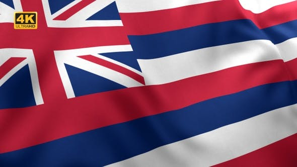 Hawaii State Flag - 4K