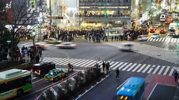 Thumbnail for Shibuya Crossing Night