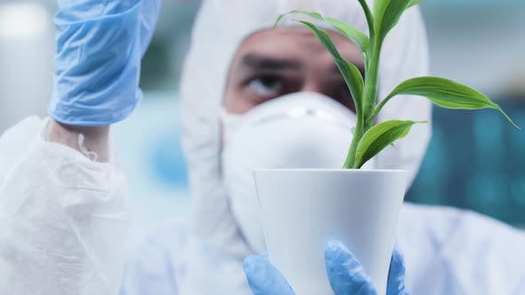 Close Up Static Shot of Biochemist at His Workplace Making Test on Plants