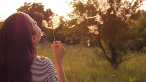 Girl Blow on Dandelion at the Sunset