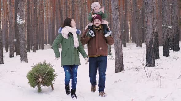 Cover Image for A Happy Family Strolls Through the Winter Forest