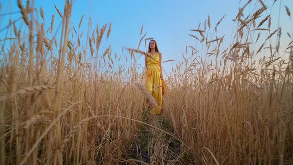 Thumbnail for Beautiful Woman in Dress at Sunset in a Wheat Field.