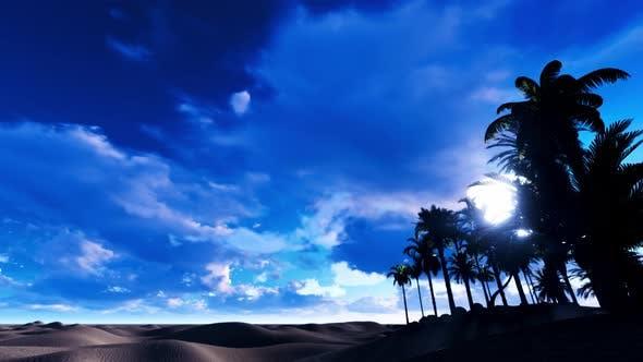 In The Desert 02 4K