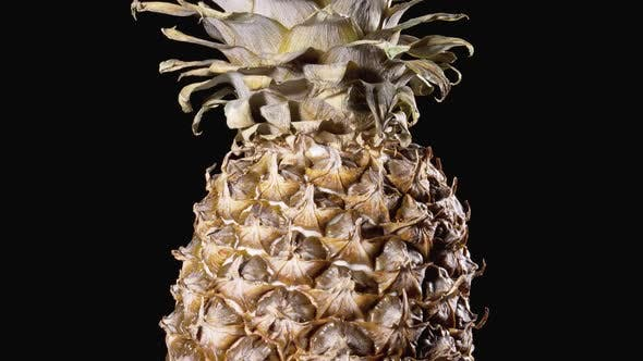 Cover Image for Pineapple Rotates on a Black Background. Detail of Pineapple Scale Skin and Crown.