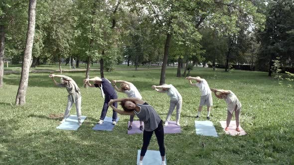 Thumbnail for Sideways Stretches in Park