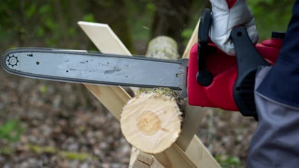 Thumbnail for Lumberjack in Gloves Saws Firewood on Sawhorses with a Electric Saw in Forest