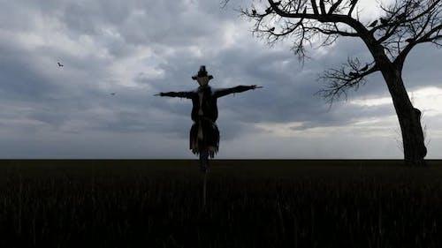 Rainy Weather and Scarecrow