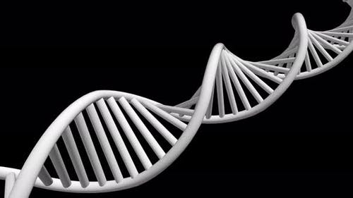 3D Rendered Loopable Animation Of Rotating Dna With Alpha Channel