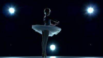 Beautiful Ballerina on Blue Background