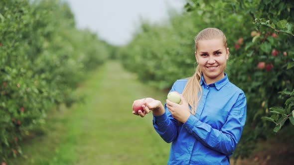 Thumbnail for Fresh Apples in a Woman's Hands