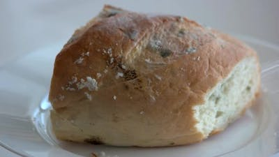 Bread Covered with Mold Close Up