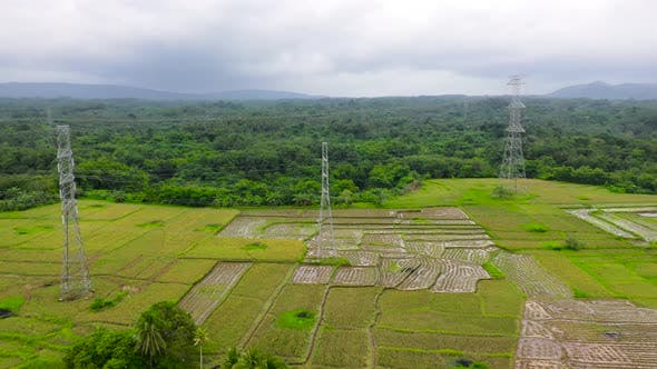 Thumbnail for Electrical Transmission Line High-Voltage Tower in the Rice Field.