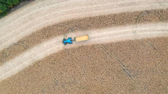 Thumbnail for Aerial Shot of Tractor Transporting Corn Cargo Along Field During Harvesting, Flying Over