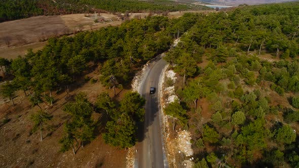 Thumbnail for Aerial View Car On Road Forest