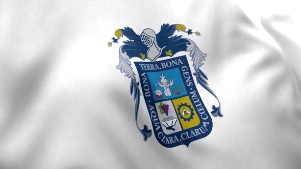 Aguascalientes Flag (Mexico)