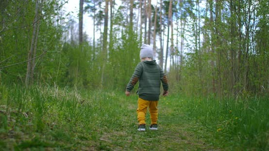Thumbnail for A 2-Year-old Caucasian Boy Walks in Slow Motion Along Forest Paths in a Pine Forest