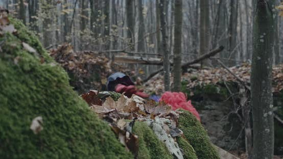 Scary Clown Looking At Camera From A Hill In The Forest