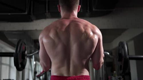 A man in a gym with beautiful muscles on his back raises a barbell in front of him