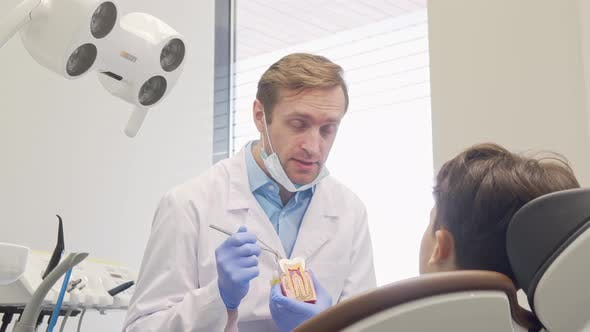 Thumbnail for Cheerful Mature Male Dentist Smiling To the Camera While Educating Little Patient
