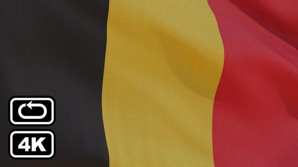 Thumbnail for Belgium Flag 4K Seamless Loop