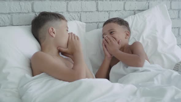 Thumbnail for Cheerful African American Boys Lying in Bed and Sharing Secrets. Portrait of Joyful Friendly
