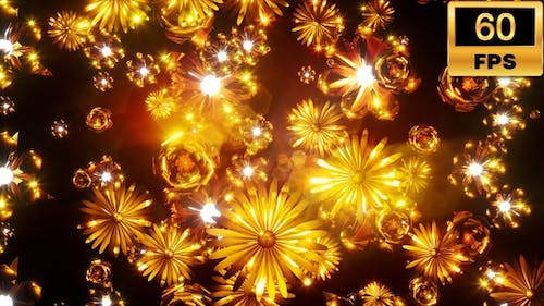 Gold Flowers 60fps