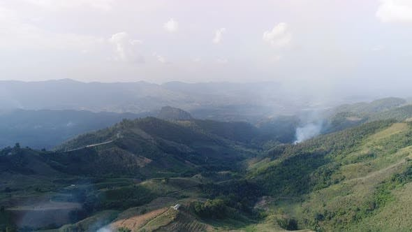 Thumbnail for Aerial View of Fire In Forest