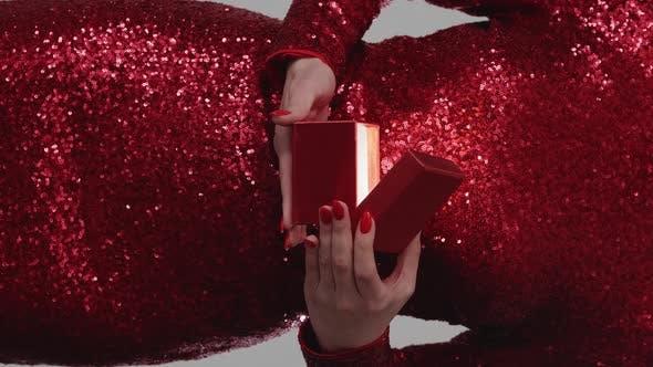 Christmas Gift Festive Surprise Holiday Spirit