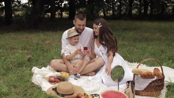 Thumbnail for Mom, Dad and Their Young Son on a Picnic in the Park in the Summer