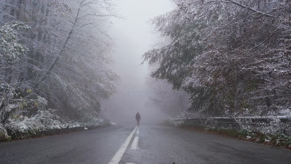 Thumbnail for Tourist Disappears in the Dense Fog at the End of the Asphalt Road in Frozen Forest