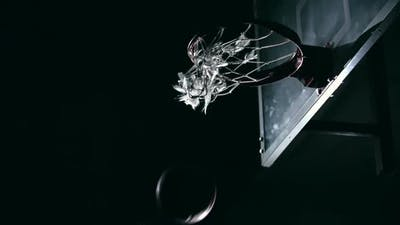 Future NBA Champion