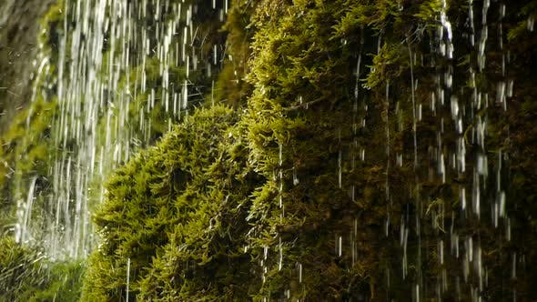Thumbnail for Waterfall Scenery of Fresh Natural Source Water