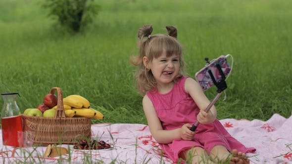 Thumbnail for Weekend at Picnic. Girl on Grass Meadow Makes Selfie on Mobile Phone with Selfie Stick. Video Call