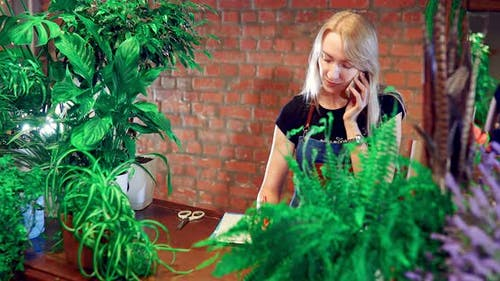 Florist Calls By Phone  Accepts Customer Order  Bouquet Selection By Phone