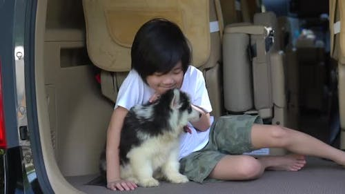 Happy Asian Child And Siberian Husky Puppy Sitting In The Car
