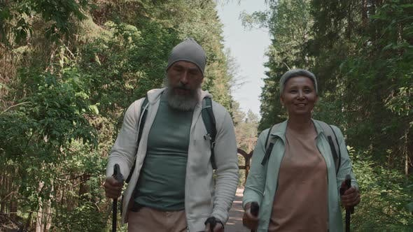 Thumbnail for Aged Couple Practicing Nordic Walking in Woods